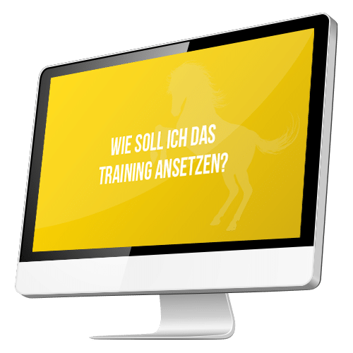 Trainingsansatz-Modul-5