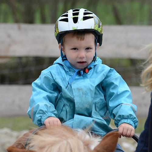 Lernen-mit-Pferden-Maxi-fit-1