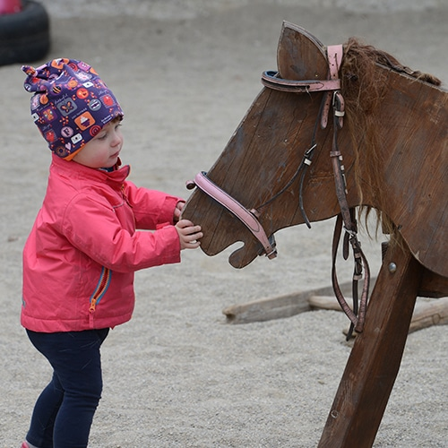 Lernen-mit-Pferden-Maxi-fit-2