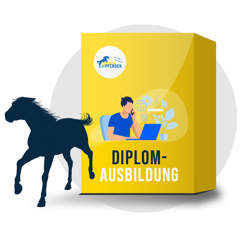 lernenmitpferden-diplomausbildung